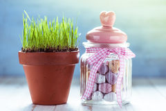 Pot with fresh grass and jar with easter eggs Royalty Free Stock Photo