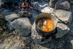 A pot of freshly made fish soup on an open fire in the woods Stock Images