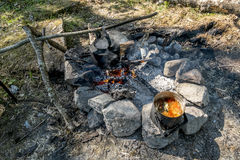 A pot of freshly made fish soup on an open fire in the woods Royalty Free Stock Photos