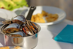 Pot of gourmet mussels garnished with fresh herbs Royalty Free Stock Photo