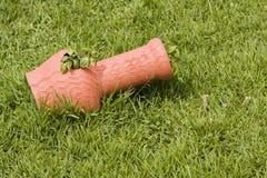 Pot in the grass Stock Photos