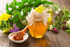Pot of honey and wooden stick Royalty Free Stock Photo