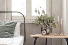 plante en pot dans une chambre coucher image stock image du pi ce feuilles 31669505. Black Bedroom Furniture Sets. Home Design Ideas