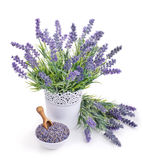 Pot of lavender and bowl with dried flowers Stock Image