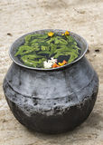 Pot with medicinal water, blessed by the guru. Royalty Free Stock Photos