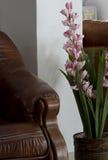 Pot met een grote ingemaakte bloem. Stock Afbeelding