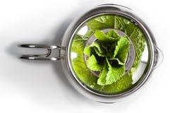 A pot of mint tea Royalty Free Stock Photo