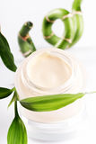 Pot of moisturizing face cream. With green bamboo leaf on white background stock image