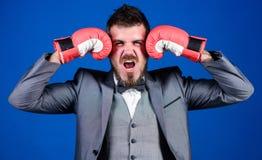 pot??ny m??czyzny bokser gotowy dla korporacyjnej bitwy biznesmen w formalnym kostiumu i ??ku krawacie brodaty m??czyzna w bokser obraz stock