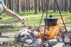 Cooking on a fire at spring. Close view of caldron over the campfire. Pot over the fire in the forest. Cooking on a fire. Spring camping concept. Opening of the stock photo