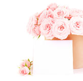 Pot of pink roses Royalty Free Stock Images