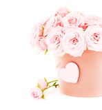 Pot of pink roses Stock Image
