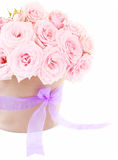 Pot of pink roses Royalty Free Stock Image