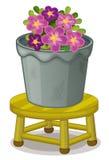 Pot plant Stock Image