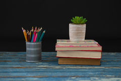 Pot plant, color pencils and book stack on wooden table. Against black background Stock Photography