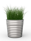 Pot plant. 3d rendering green grass in pot plant Stock Photography