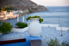 A pot plant on a terrace in Greece Stock Image
