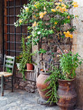 Pot Plants Outside Stone House. Large pot plants growing in traditional Grecian style urns, outside a well maintained stone house, Greece Stock Photo