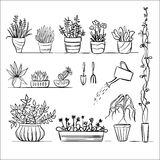 Pot plants and tools sketch. Hand drawing set, gardening vector collection royalty free illustration