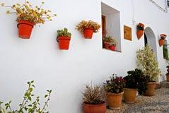 Pot plants on wall, Frigiliana, Spain. Stock Image
