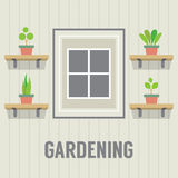 Pot Plants Beside Window Gardening Concept Royalty Free Stock Images