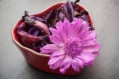 Pot-pourri avec les fleurs pourpres et la nature sèche dans le sha Photos stock