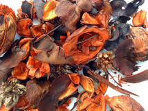 Pot Pourri Background Royalty Free Stock Photo