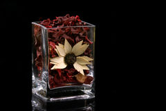 Pot-pourri en verre Image stock