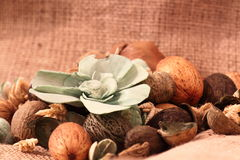 Pot pourri hessian Royalty Free Stock Photo