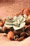 Pot pourri hessian Stock Photography
