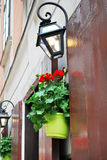 Pot with red flowers on the street Royalty Free Stock Image