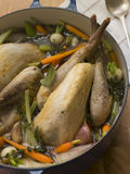 Pot Roasted Guinea Fowl with Spring Vegetables Royalty Free Stock Photography