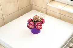 Pot with roses Royalty Free Stock Photos