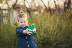 Pot with seedlings in children`s hands royalty free stock images