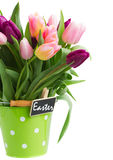 Pot of spring tulips Royalty Free Stock Photos