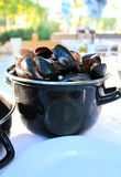 A Pot with Steamed Mussels. A black iron pot with steamed mussels in shells Royalty Free Stock Photography