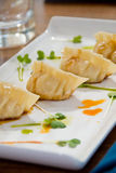 Pot stickers. With soy sauce and micro greens royalty free stock photography