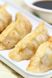 Pot stickers Royalty Free Stock Photo