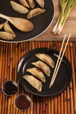 Pot Stickers. Freshly cooked Chinese style pot stickers with soy sauce, pepper sauce and raw green onion. Four pot stickers are plated beside the cooking pan Royalty Free Stock Photo