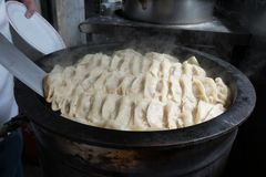Pot stickers gyoza ,Chinese cuisine, view from the top. stock photos