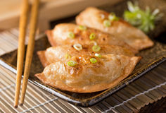 Pot Stickers. A plate of delicious asian pot stickers with scallions Stock Photography