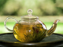Pot of tea with jasmine Stock Photo