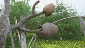 Pot traditionnel de cru d'argile sur la barri?re en bois banque de vidéos