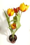 Pot van Gele en Rode Tulp Royalty-vrije Stock Afbeelding