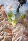 Pot vast art. Hot water in pot shape Stock Photography