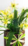 Pot of yellow daffodil flowers Royalty Free Stock Images