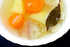 Potage appétissant de poissons Photo libre de droits