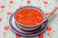 Potage asiatique Photo stock