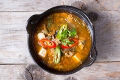Potage asiatique avec le tofu Images stock