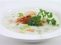 Potage aux légumes ; 1 de 5 Image stock